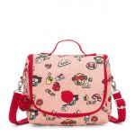 NEW KICHIROU Monkey Play POUCHES/CASES by Kipling Front