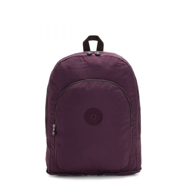 EARNEST Dark Plum BACKPACKS by Kipling Front